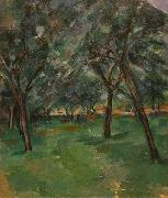 A Close, Paul Cezanne