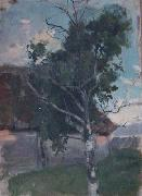 Etude with a birch