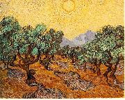 Olive Trees with Yellow Sky and Sun, Vincent Van Gogh
