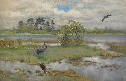 Landscape With Cranes at the Water, bruno liljefors