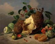 unknow artist Still life with fruit oil painting reproduction