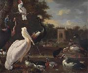 A Pelican and other exotic birds in a park, unknow artist