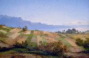 Alexandre Calame Swiss Landscape oil painting reproduction