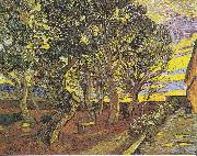 Garden of the Hospital Saint-Paul, Vincent Van Gogh