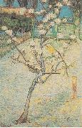 Flowering Pear-Tree, Vincent Van Gogh