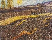 Field with plowing farmers, Vincent Van Gogh