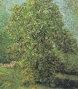 Blossoming Chestnut Tree, Vincent Van Gogh