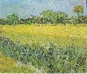 View of Arles with irises in the foreground, Vincent Van Gogh