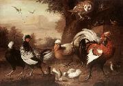 Fowls and Owl