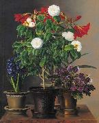 Johan Laurentz Jensen Camelias, amaryllis, hyacinth and violets in ornamental pots on a marble ledge oil painting artist