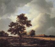 Jacob van Ruisdael Landscape with Shepherds and Peasants oil painting artist