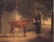 Mr Wombell's Hunter with a Groom in a Courtyard