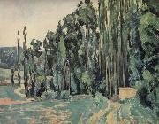 Paul Cezanne The Poplars oil painting reproduction