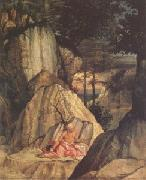 Jerome in the Desert (mk05), Lorenzo Lotto