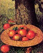 Prentice, Levi Wells Apples, Hat, and Tree oil painting