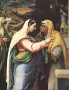 Sebastiano del Piombo The Visitation (mk05) oil painting