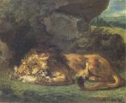 Lion Devouring a Rabbit (mk05)