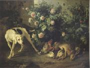 Dog Guarding Game Near a Rosebush (mk05)