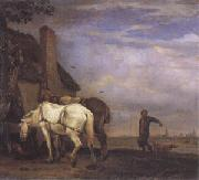 Two Drafthorses in Front of a Cottage (mk05), POTTER, Paulus