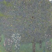 Rose Bushes Under the Trees (mk20), Gustav Klimt