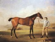 STUBBS, George Molly Longlegs with Jockey (mk08) oil painting