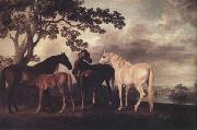 George Stubbs Mares and Foais in a Landscape (nn03) oil painting