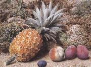 John Sherrin A Pineapple,a Peach and Plums on a mossy Bank (mk37)
