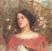 John William Waterhouse The Rose Bower (mk41) oil painting