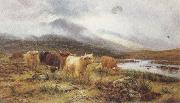 Highland Cattle on the Banks of a River (mk37), Louis bosworth hurt