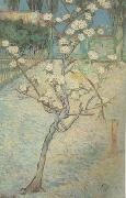 Blossoming Pear Tree (nn04), Vincent Van Gogh