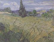 Green Wheat Field with Cypress (nn04), Vincent Van Gogh