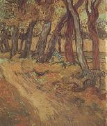 The Garden of Saint-Paul Hospital with Figure (nn04), Vincent Van Gogh