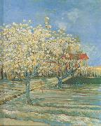 Orchard in Blossom (nn04), Vincent Van Gogh