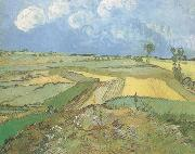 Wheat Fields at Auvers under Clouded Sky (nn04), Vincent Van Gogh
