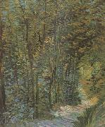 Path in the Woods (nn04), Vincent Van Gogh