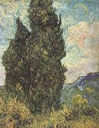 Vincent Van Gogh Cypresses (nn04) oil painting reproduction