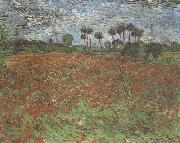 Field with Poppies (nn04), Vincent Van Gogh