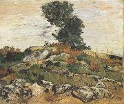 Rocks with Oak Trees (nn04), Vincent Van Gogh