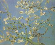 Blossoming Almond Tree (nn04), Vincent Van Gogh