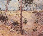 Vincent Van Gogh Trees in a Field on a Sunny Day (nn04) oil painting on canvas