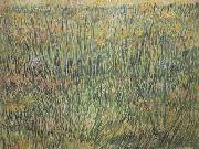 Pasture in Bloom (nn04), Vincent Van Gogh