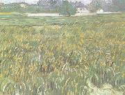 Wheat Field at Auvers with White House (nn04), Vincent Van Gogh