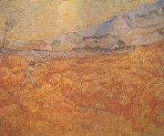Wheat Field behind Saint-Paul Hospital with a Reaper (nn04), Vincent Van Gogh