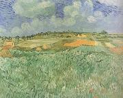 Plain near Auvers (nn04), Vincent Van Gogh