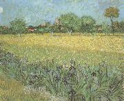 View of Arles with Irises in the Foreground (nn04), Vincent Van Gogh