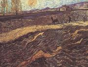 Enclosed Field with Ploughman (nn04), Vincent Van Gogh