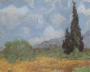 Wheat Field with Cypresses (nn04), Vincent Van Gogh