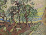 The Garden of Saint-Paul Hospital (nn04), Vincent Van Gogh