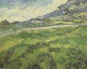 Green Wheat Field (nn04), Vincent Van Gogh