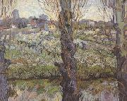 Orchard in Blossom with View of Arles (nn04)